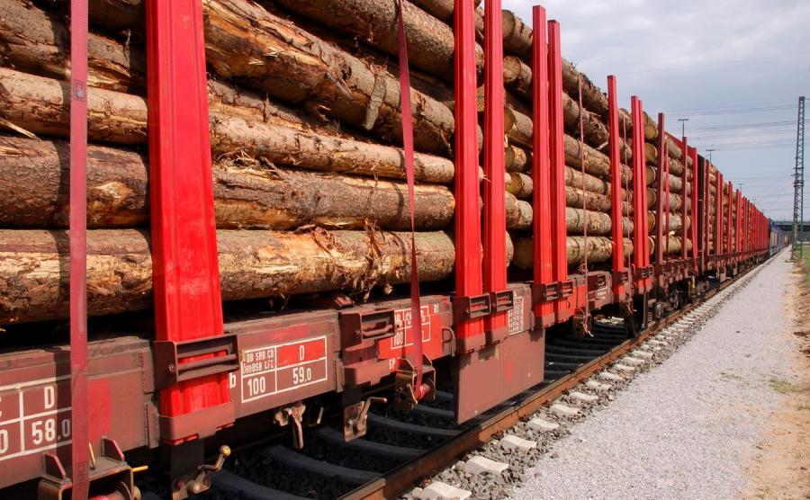 Pociąg z drewnem