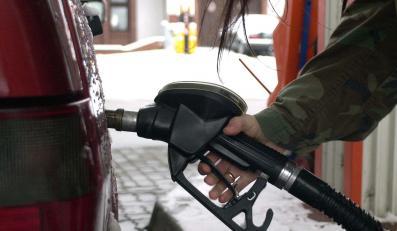 Grupa rozprowadzała nielegalne paliwo od 2004 roku