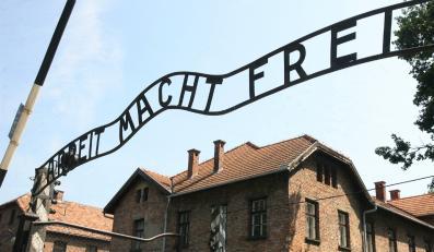 Pisarz-skandalista: Zrobiliście z Auschwitz Disneyland