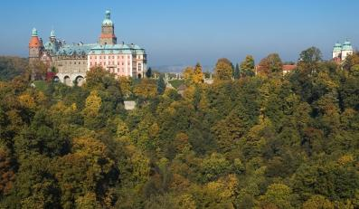 Zamek w Książu