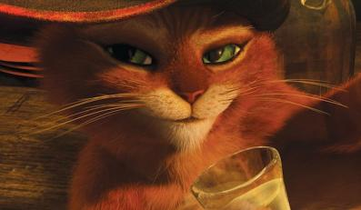 """""""Kot w butach"""""""
