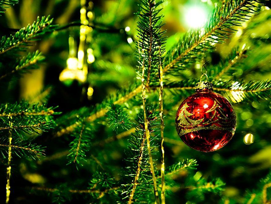 Święta będą potwornie drogie. Nawet karp podrożeje