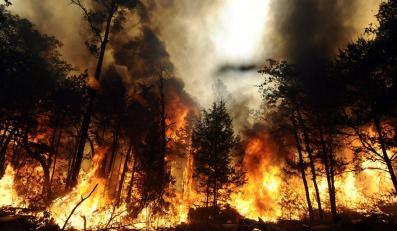 Potężny, niedający się opanować pożar w Bastrop State Park, strawił 14 tys. hektarów i zniszczył setki domów. 5 września, Bastrop, Texas, USA
