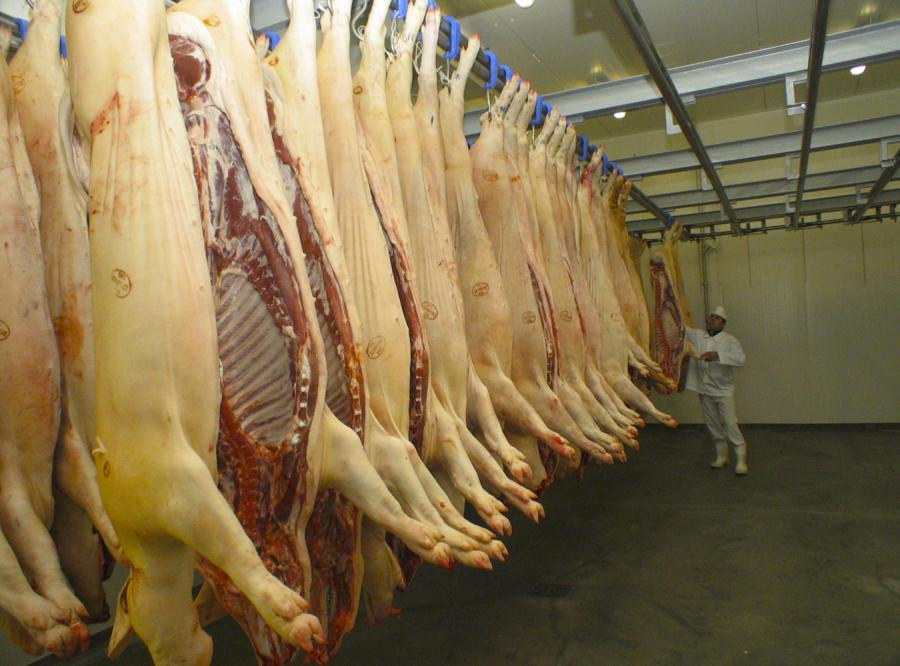 Ukraina grozi zakazem wwozu mięsa wieprzowego z Polski