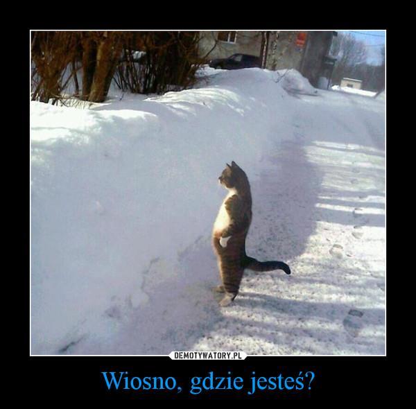 Znalezione obrazy dla zapytania zima wiosną
