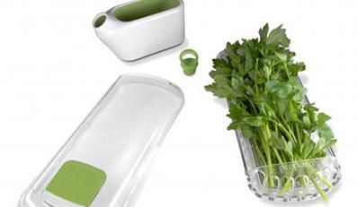 Jak przechować zioło w lodówce?