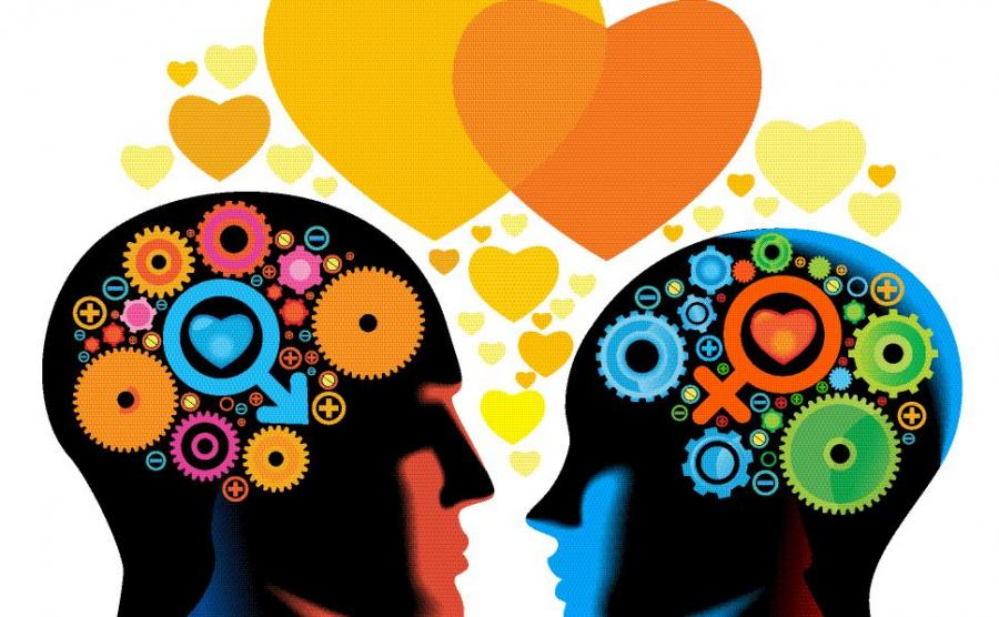 Ученые обнаружили центр влюбленности вмозгу
